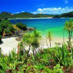 Matauri Bay Surroundings